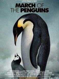 《帝企鹅日记》海报